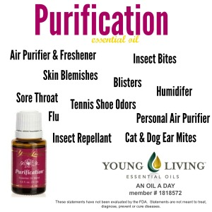Uses of Purification EO